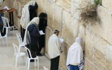 「パレスチナが抱える問題は何か」答えられない自分が、悔しくて情けなかった