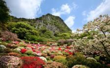 佐賀県へ行きたくなる美しい絶景スポット6選