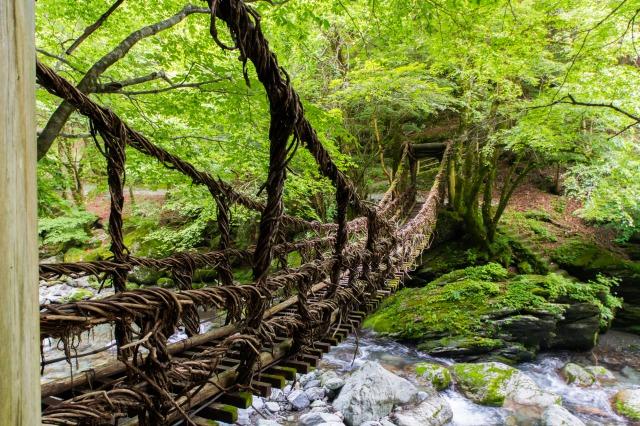 奥祖谷二重かずら橋