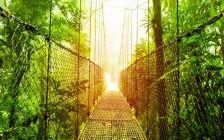 動植物の楽園と称されるエコツーリズム発祥の国「コスタリカ」の世界遺産まとめ
