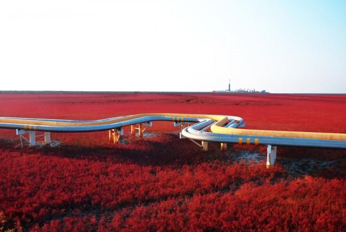 紅海灘風景区