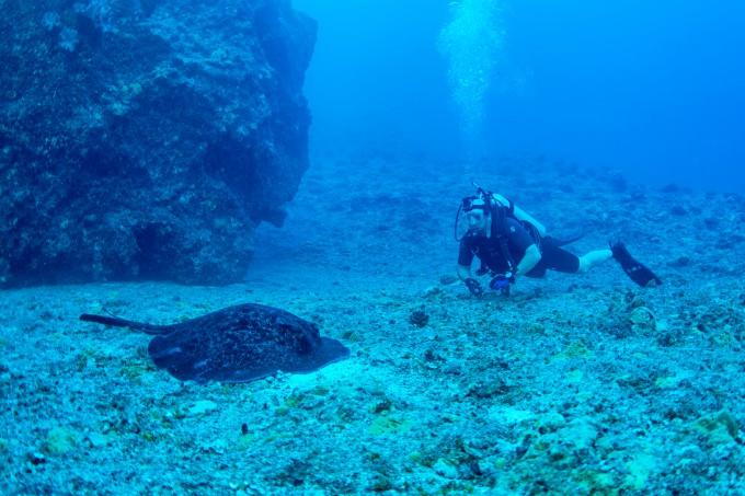 グアム島・アプラ湾