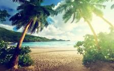 日本国内の購入できる7つの無人島【2000万円から】