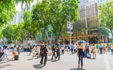 シンガポールの多文化が詰まった観光スポット8選