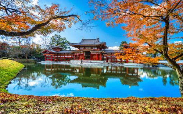 古都京都の魅力を味わえる世界遺...