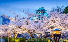 「airbnb」で見つける!大阪で1万円以内で泊まれる物件12選