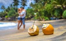 スリランカの有名な観光スポット4選