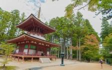 日本屈指のパワースポット「高野山」で心も体も癒される