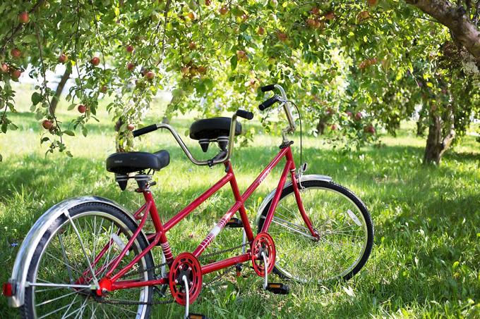 tandem-bike-905067_1280