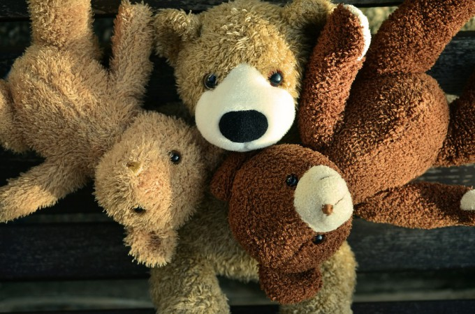 teddy-1183003_960_720