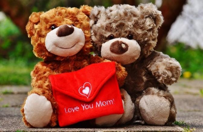 teddy-1338928_960_720